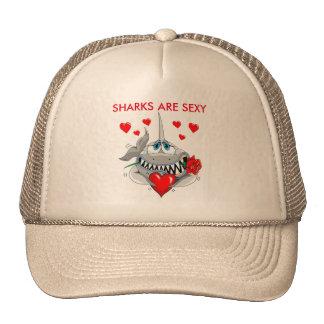 Sharks are sexy baseball cap