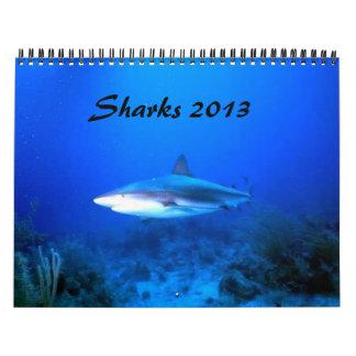 Sharks Calendar 2013