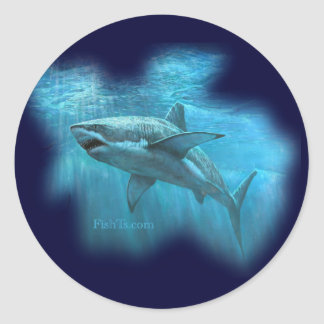 Sharks Collection by FishTs.com Round Sticker