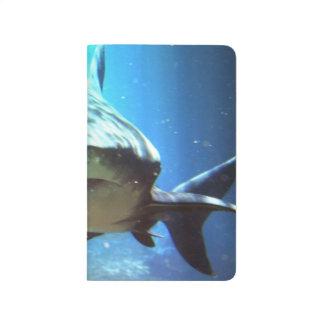 Sharks Journals