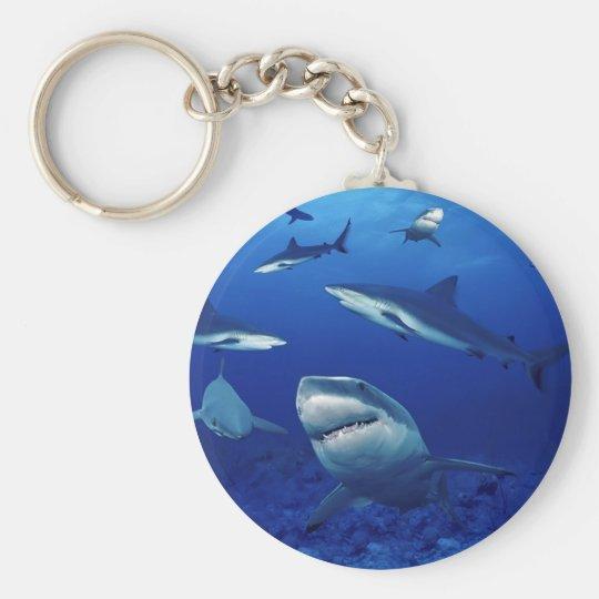 Sharks Keychain
