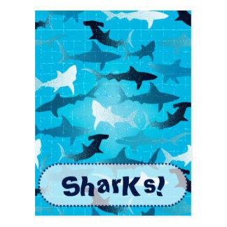 sharks! postcard