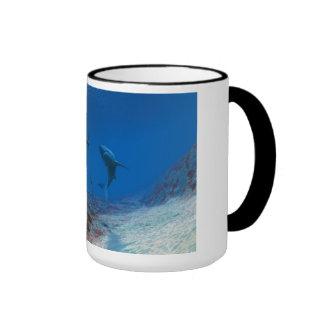 Sharks Ringer Mug