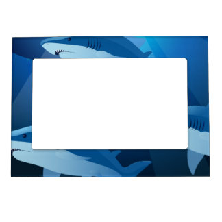 Sharks swimming magnetic picture frame