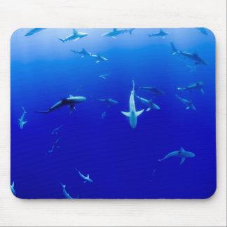 Sharks Underwater Mouse Mat
