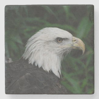 Sharp Beaked Eagle Stone Coaster