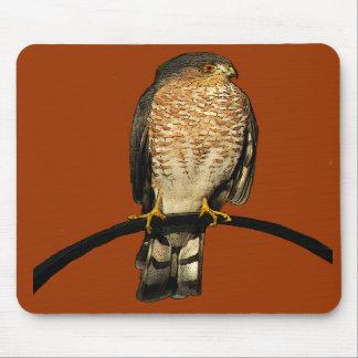 Sharp-shinned Hawk Mouse Pads