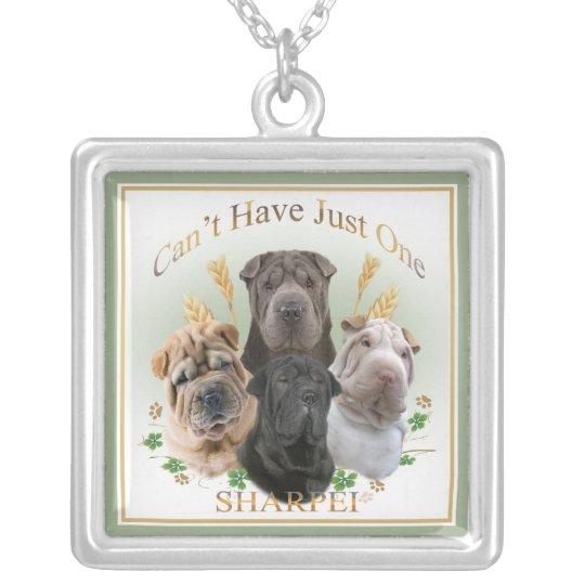 Sharpei cant' have just one necklace