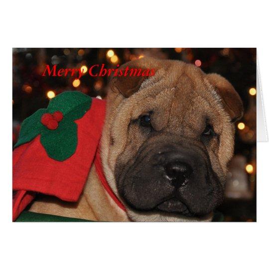 Sharpei Christmas Card