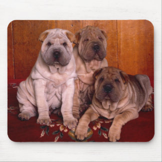 sharpei mouse pad