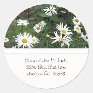 Shasta Daisies Address Stickers