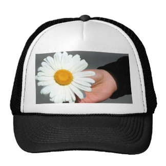 Shasta Daisy Cap Mesh Hat