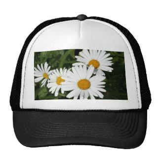 Shasta Daisy Cap Hat