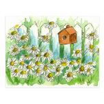 Shasta Daisy Garden Postcard Watercolor Flower Art