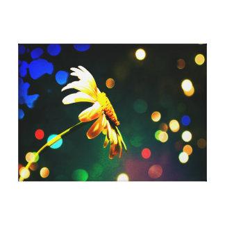 Shasta Daisy Sparkle Wrapped Canvas Canvas Print