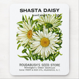 Shasta Daisy Vintage Seed Packet Mouse Pads