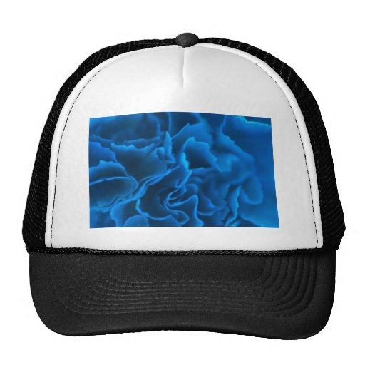 shaves of blue trucker hat