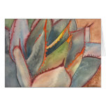 Shaw's agave notecard greeting card