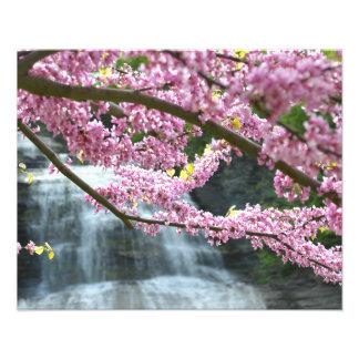 "She-qua-ga waterfall 20""x16"" Photo Print"