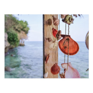 She Sells Sea Shells Postcard