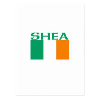 Shea Postcard