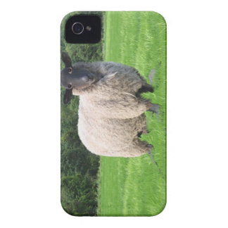 Sheal BlackBerry Bold Case-Mate Barely There™