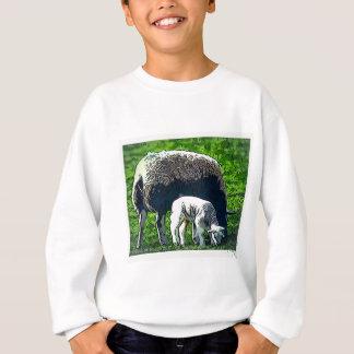 Sheep and lamb cartoon sweatshirt