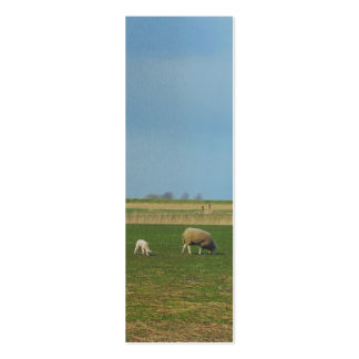 Sheep and Lamb Landscape Photo Bookmark Gift Business Card