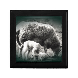 Sheep and lamb mono picture gift box