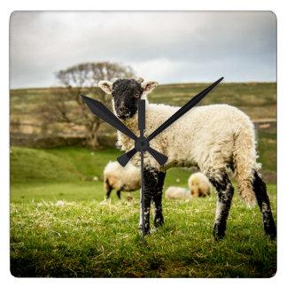 Sheep and Lambs Wall Clock