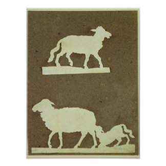 Sheep and Sheep with Lamb Poster