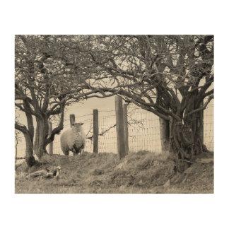 sheep between trees wood wall decor