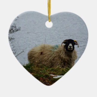 Sheep by the water christmas ornament