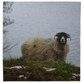 Sheep by the water napkin