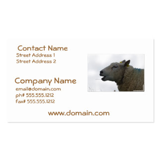 Sheep Chomping on Hay Double-Sided Standard Business Cards (Pack Of 100)