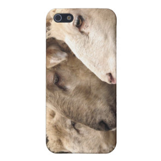 sheep cover for iPhone 5/5S
