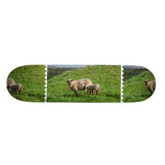 Sheep Family 20.6 Cm Skateboard Deck