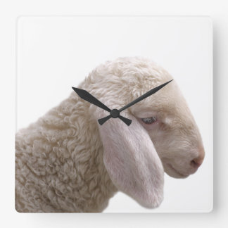 Sheep farm animal photo nursery square wall clock