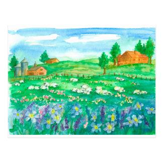 Sheep Farm House Wildflowers Postcard