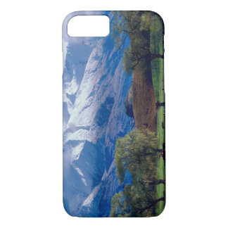 Sheep grazing below the snow-capped Harris iPhone 8/7 Case