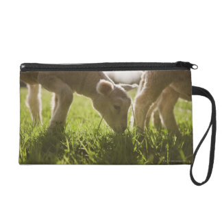Sheep Grazing in Grass Wristlet Clutches