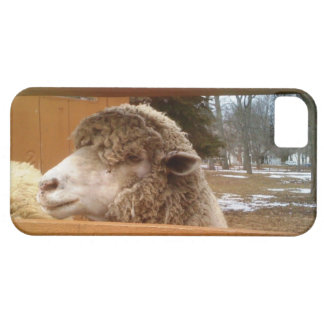 Sheep Guard - a Wholly Protector for your Cell iPhone 5 Case