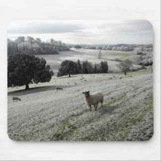 Sheep in a frosty valley mousepad