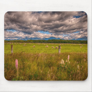Sheep in Fiordland, Te Anau, New Zealand Mouse Mat