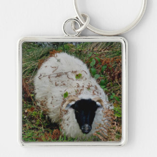 Sheep in hideing on dartmoor Silver-Colored square key ring