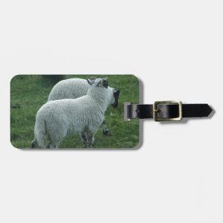 Sheep in Scotland Luggage Tag