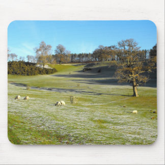 Sheep in the frosty valley mouse pad