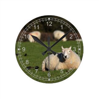 Sheep in the Pasture Round Clock