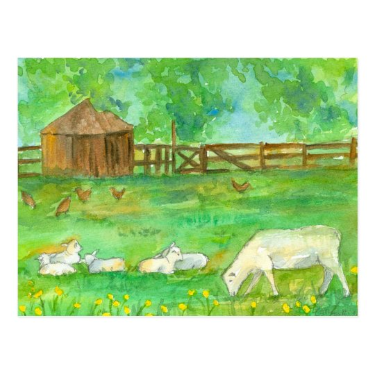 Sheep Lambs Chickens Farm Animals Painting Postcard