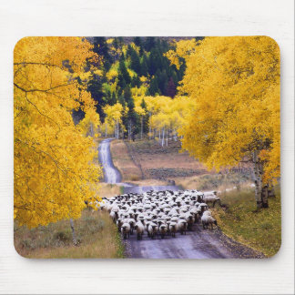 Sheep on Country Road Mouse Pad